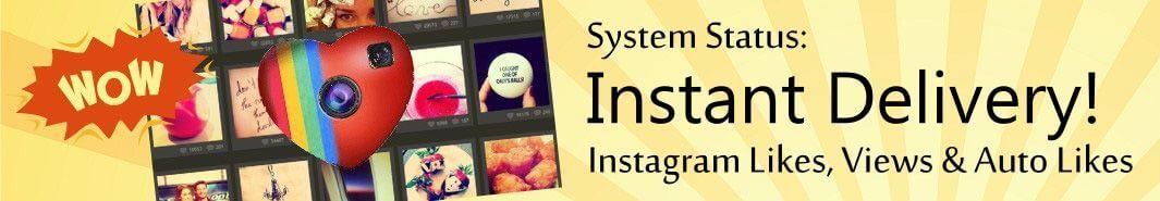 Story Views Instagram | AUTO LIKES INSTAGRAM